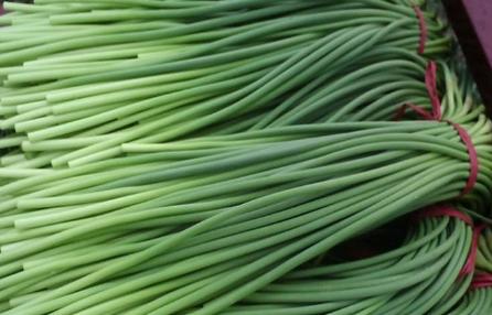 2018蒜苔的价格及种植前景