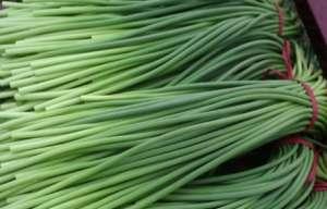 蒜苔的种植前景如何 今年的价格怎样